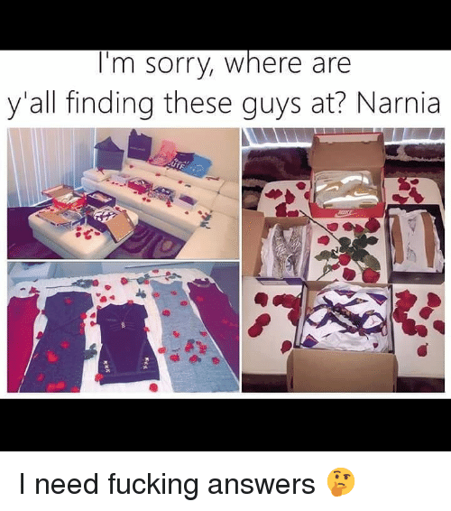 narnia: I'm sorry, where are  y'all finding these guys at? Narnia I need fucking answers 🤔