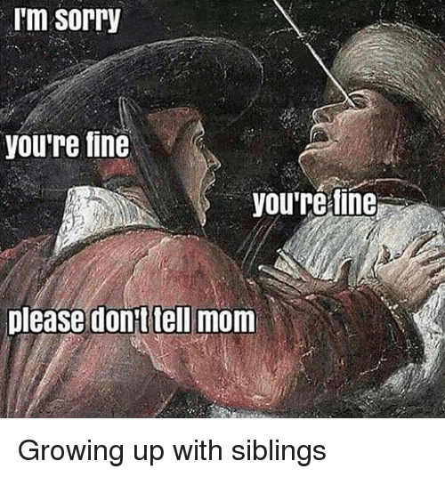 Growing Up With Siblings: I'm Sorry  you're fine  you're fine  please dont tell mom Growing up with siblings
