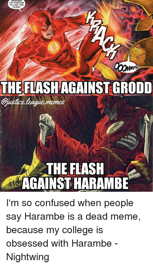 College, Confused, and Meme: I'M STARTING  TO LIKE THS  PLACE!  THEFLASH AGAINST GRODD  THE FLASH  AGAINST HARAMBE I'm so confused when people say Harambe is a dead meme, because my college is obsessed with Harambe -Nightwing