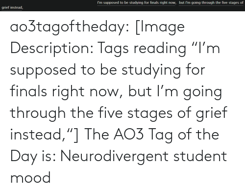 "Finals: I'm supposed to be studying for finals right now, but l'm going through the five stages of  grief instead, ao3tagoftheday:  [Image Description: Tags reading ""I'm supposed to be studying for finals right now, but I'm going through the five stages of grief instead,""]  The AO3 Tag of the Day is: Neurodivergent student mood"