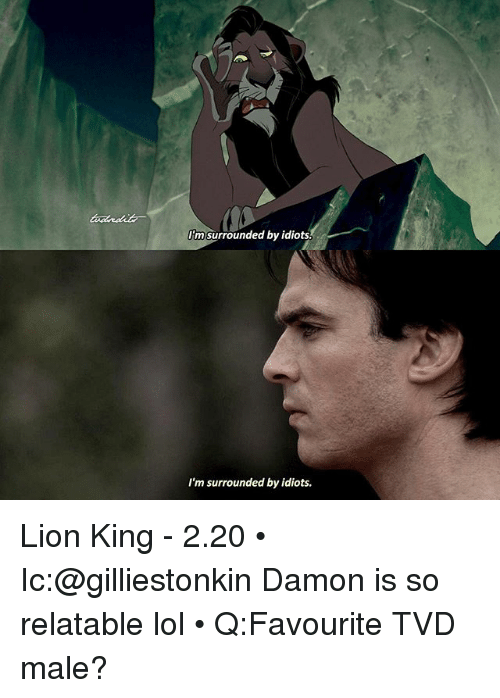 im surrounded by idiots: Im surrounded by idiots.  I'm surrounded by idiots. Lion King - 2.20 • Ic:@gilliestonkin Damon is so relatable lol • Q:Favourite TVD male?