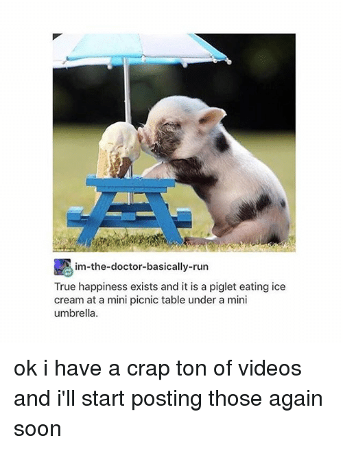 Thoses: im-the-doctor-basically-run  True happiness exists and it is a piglet eating ice  cream at a mini picnic table under a mini  umbrella ok i have a crap ton of videos and i'll start posting those again soon