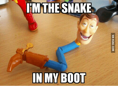 Theres A Boot In My Snake