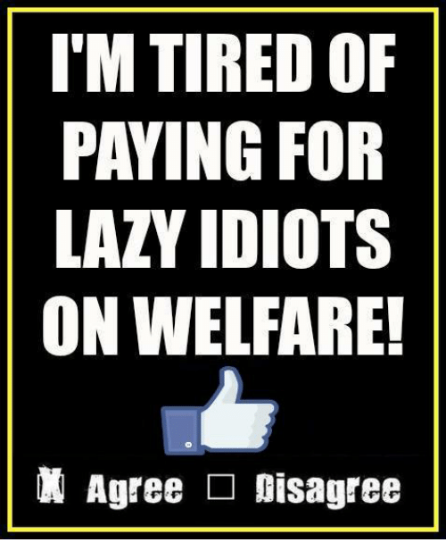 Lazy, Memes, and Idiot: I'M TIREDOF  PAYING FOR  LAZY IDIOTS  ON WELFARE!  Agree Disagree