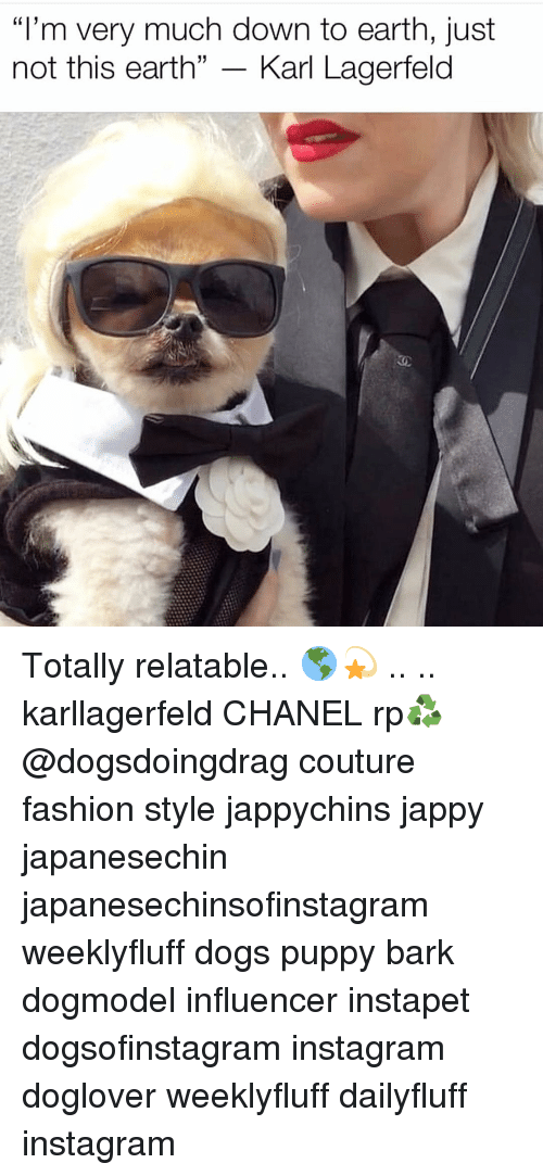 "karl lagerfeld: ""I'm very much down to earth, just  not this earth"" - Karl Lagerfeld Totally relatable.. 🌎💫 .. .. karllagerfeld CHANEL rp♻️ @dogsdoingdrag couture fashion style jappychins jappy japanesechin japanesechinsofinstagram weeklyfluff dogs puppy bark dogmodel influencer instapet dogsofinstagram instagram doglover weeklyfluff dailyfluff instagram"