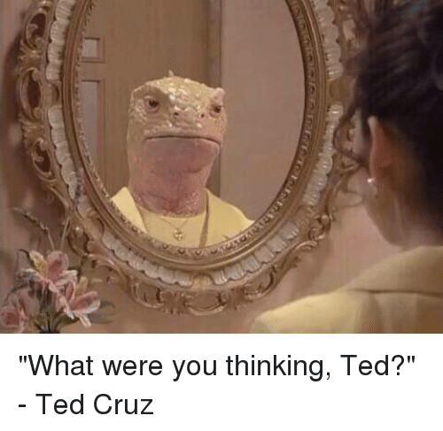 """Dank, Ted, and Ted Cruz: iM """"What were you thinking, Ted?"""" - Ted Cruz"""