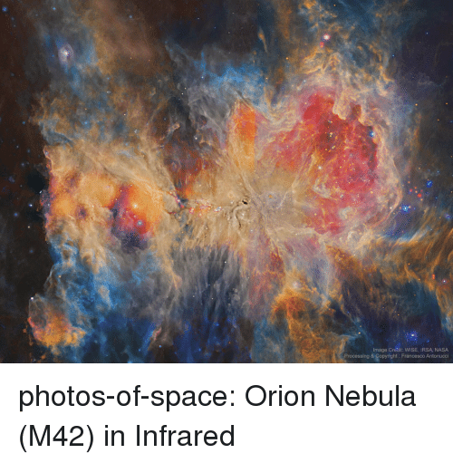 processing: Image Credit: WISE, IRSA NASA  Processing & Copyright: Francesco Antonucci photos-of-space:  Orion Nebula (M42) in Infrared