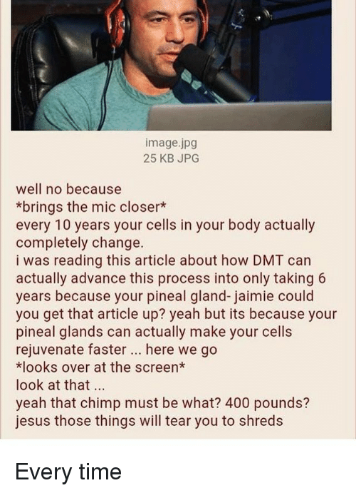 Chimp: image.jpg  25 KB JPG  well no because  *brings the mic closer*  every 10 years your cells in your body actually  completely change.  i was reading this article about how DMT can  actually advance this process into only taking 6  years because your pineal gland-jaimie could  you get that article up? yeah but its because your  pineal glands can actually make your cells  rejuvenate faster. here we go  *looks over at the screen*  look at that  yeah that chimp must be what? 400 pounds?  jesus those things will tear you to shreds Every time
