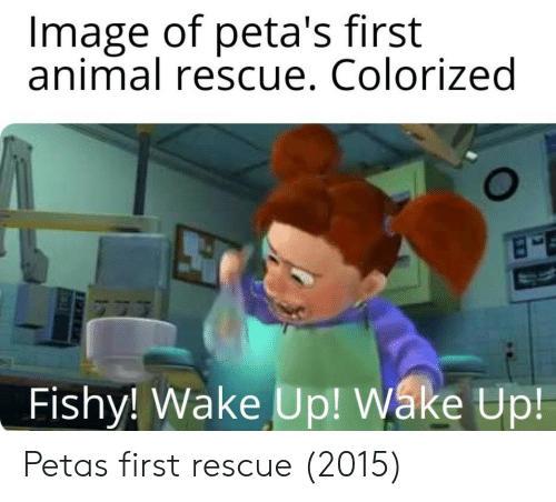 fishy: Image of peta's first  animal rescue. Colorized  Fishy! Wake Up! Wáke Up Petas first rescue (2015)
