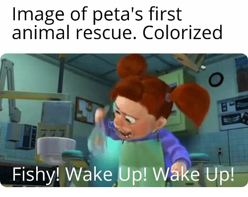 fishy: Image of peta's first  animal rescue. Colorized  Fishy! Wake Up! Walke Up