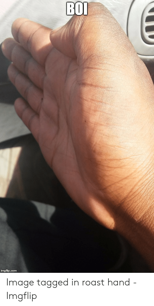 Roast Hand: Image tagged in roast hand - Imgflip