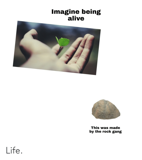 The Rock: Imagine being  alive  This was made  by the rock gang Life.