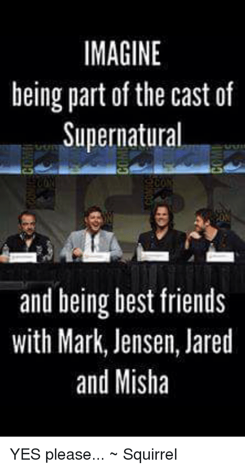 best friend: IMAGINE  being part of the cast of  Supernatural  and being best friends  with Mark, Jensen, Jared  and Misha YES please...   ~ Squirrel