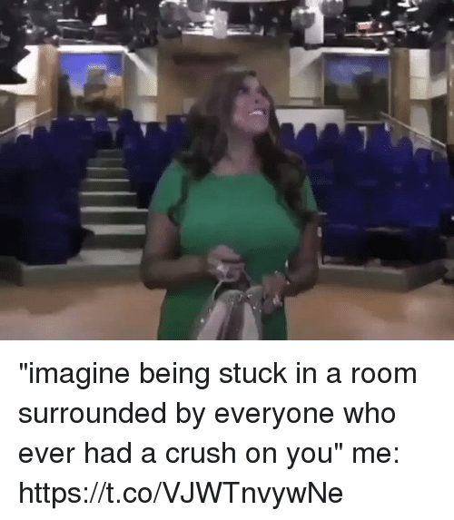 """Crush, Girl Memes, and Who: """"imagine being stuck in a room surrounded by everyone who ever had a crush on you""""  me: https://t.co/VJWTnvywNe"""