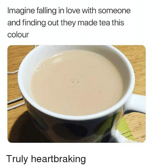 Love, Memes, and 🤖: Imagine falling in love with someone  and finding out they made tea this  colour Truly heartbraking