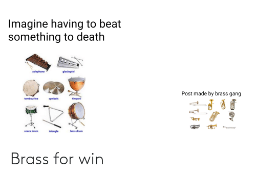 cymbals: Imagine having to beat  something to death  xylephone  glockspiel  Post made by brass gang  timpani  tambourine  cymbals  snare drum  bass drum  triangle Brass for win
