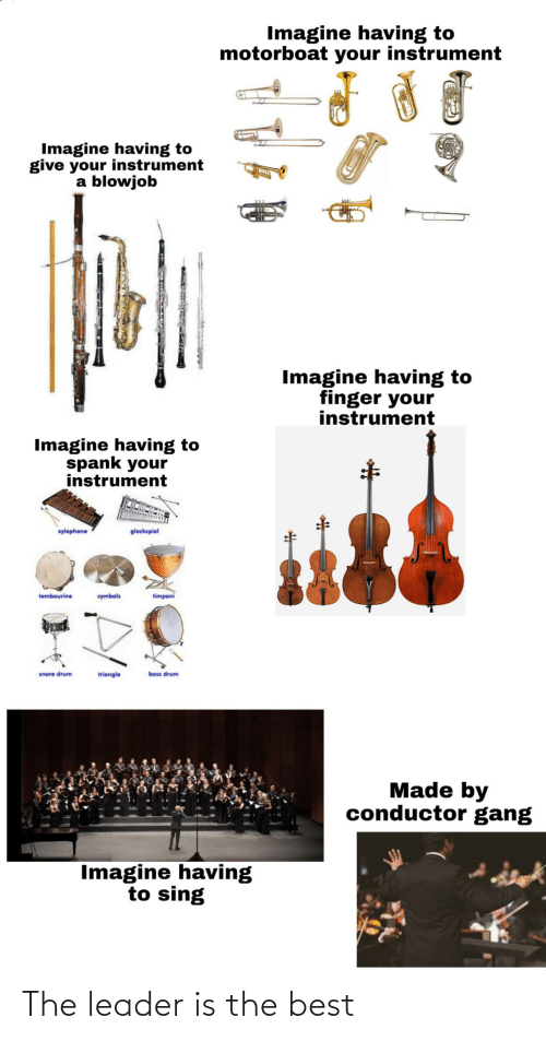 cymbals: Imagine having to  motorboat your instrument  Imagine having to  give your instrument  a blowjob  Imagine having to  finger your  instrument  Imagine having to  spank your  instrument  wylephone  glockspiel  timpani  tambourine  cymbals  bass drum  snare drum  triangle  Made by  conductor gang  Imagine having  to sing The leader is the best