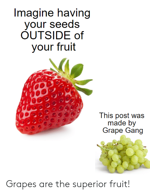 seeds: Imagine having  your seeds  OUTSIDE of  your fruit  This post was  made by  Grape Gang Grapes are the superior fruit!