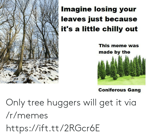 Just Because: Imagine losing your  leaves just because  it's a little chilly out  This meme was  made by the  Coniferous Gang Only tree huggers will get it via /r/memes https://ift.tt/2RGcr6E