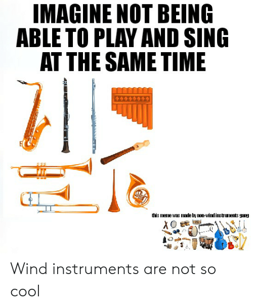 Dis Meme: IMAGINE NOT BEING  ABLE TO PLAY AND SING  AT THE SAME TIME  dis meme was made by non-wind instruments gaI Wind instruments are not so cool