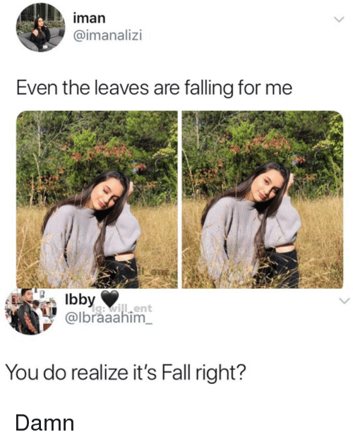Its Fall: iman  @imanalizi  Even the leaves are falling for me  g:will.ent  @lbraaahim  You do realize it's Fall right? Damn