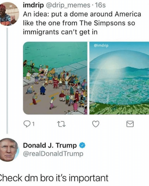drip: imdrip @drip_memes 16s  An idea: put a dome around America  like the one from The Simpsons so  immigrants can't get in  @imdrip  Donald J. Trump  @realDonaldTrump  heck dm bro it's important