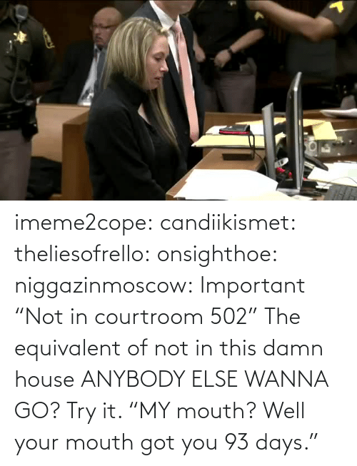 """In Class: imeme2cope:  candiikismet:   theliesofrello:   onsighthoe:   niggazinmoscow:  Important  """"Not in courtroom 502""""   The equivalent of not in this damn house    ANYBODY ELSE WANNA GO?  Try it.     """"MY mouth? Well your mouth got you 93 days."""""""