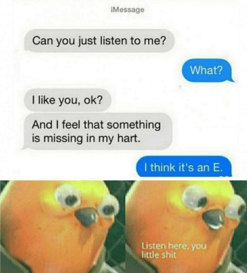 You Ok: iMessage  Can you just listen to me?  What?  I like you, ok?  And I feel that something  is missing in my hart.  I think it's an E.  Listen here, you  little shit