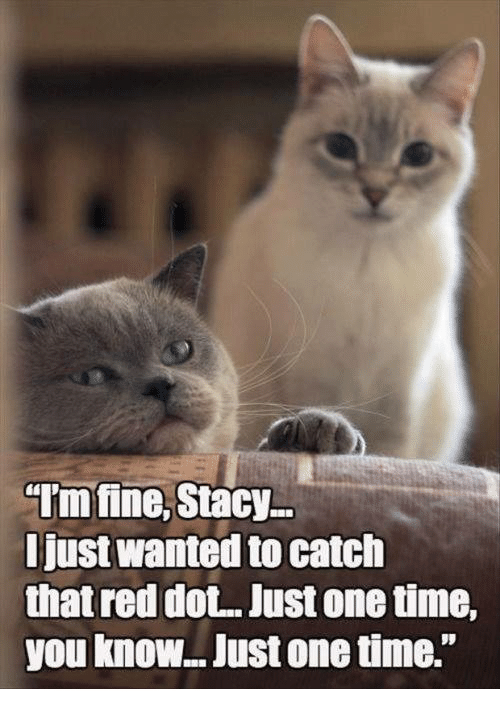 """staci: """"Imfine, Stacy  Just Wanted to catch  that red dot. Just onetime,  you know.. Just onetime."""
