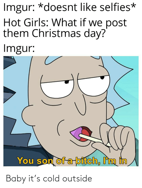 selfies: Imgur: *doesnt like selfies*  Hot Girls: What if we post  them Christmas day?  Imgur:  You son of a-bitch, I'm in Baby it's cold outside
