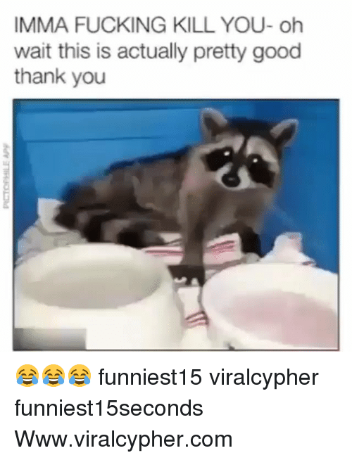 Fucking, Funny, and Thank You: IMMA FUCKING KILL YOU- oh  wait this is actually pretty good  thank you 😂😂😂 funniest15 viralcypher funniest15seconds Www.viralcypher.com