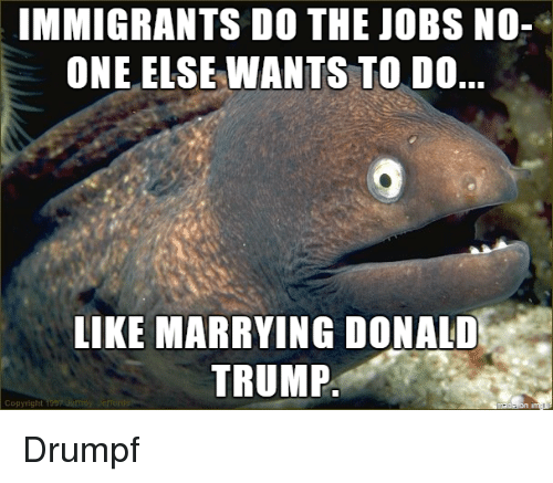 Advice Hell: IMMIGRANTS DO THE JOBS NO-  ONE ELSE WANTS TO DO..  LIKE MARRYING DONALD  TRUMP Drumpf