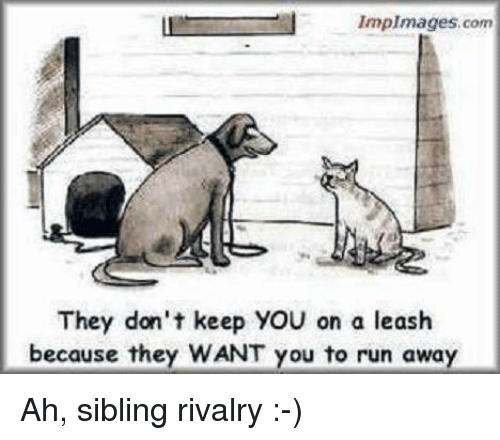 Sibling Rivalry: Implmages, com  They don't keep YOU on a leash  because they WANT you to run away Ah, sibling rivalry :-)