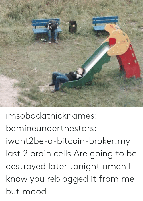 Bitcoin: imsobadatnicknames:  bemineunderthestars:  iwant2be-a-bitcoin-broker:my last 2 brain cells   Are going to be destroyed later tonight amen   I know you reblogged it from me but mood