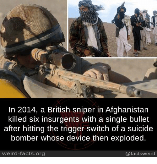 The Triggering: In 2014, a British sniper in Afghanistan  killed six insurgents with a single bullet  after hitting the trigger switch of a suicide  bomber whose device then exploded.  weird-facts.org  @factsweird