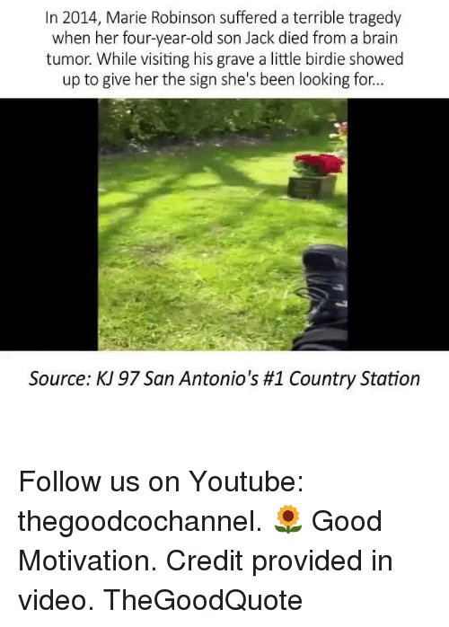 birdie: In 2014, Marie Robinson suffered a terrible tragedy  when her four-year-old son Jack died from a brain  tumor. While visiting his grave a little birdie showed  up to give her the sign she's been looking for...  Source: K 97 San Antonio's #1 Country Station Follow us on Youtube: thegoodcochannel. 🌻 Good Motivation. Credit provided in video. TheGoodQuote