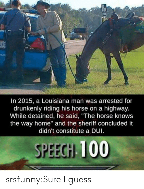 """sheriff: In 2015, a Louisiana man was arrested for  drunkenly riding his horse on a highway.  While detained, he said, """"The horse knows  the way home"""" and the sheriff concluded it  didn't constitute a DUI  SPEEGH 100 srsfunny:Sure I guess"""