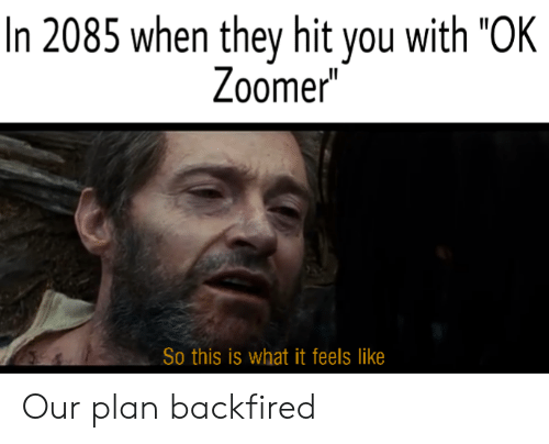 "It Feels: In 2085 when they hit you with ""OK  Zoomer  So this is what it feels like Our plan backfired"