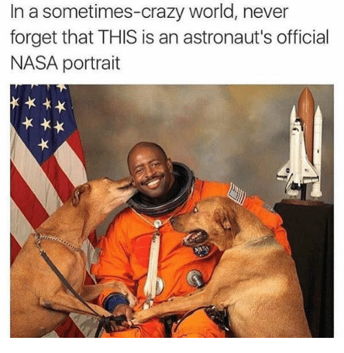 515 Funny NASA Memes Of 2016 On SIZZLE