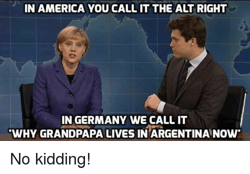 in america you callit the alt right in germany we 8988426 in america you callit the alt right in germany we call it why,Alt Right Meme