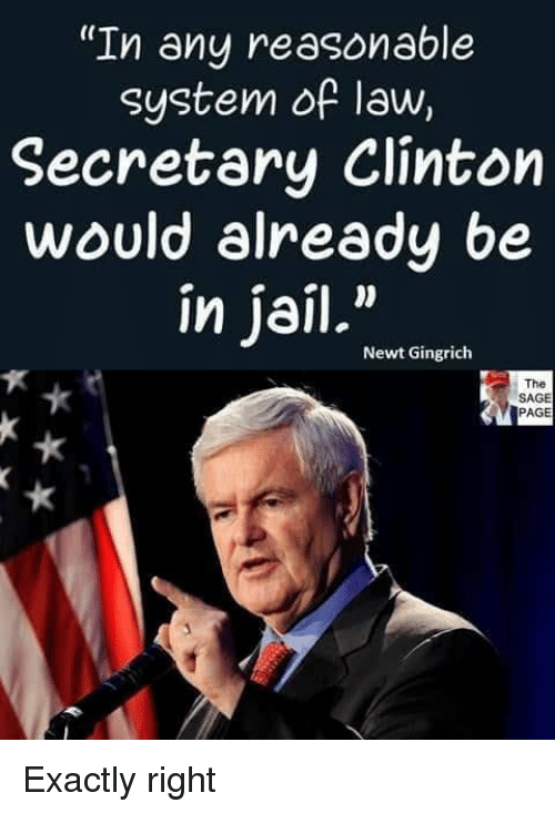 "Jail, Memes, and Sage: ""In any reasonable  system of law,  Secretary Clinton  would already be  in jail.""  Newt Gingrich  The  SAGE  PAGE Exactly right"