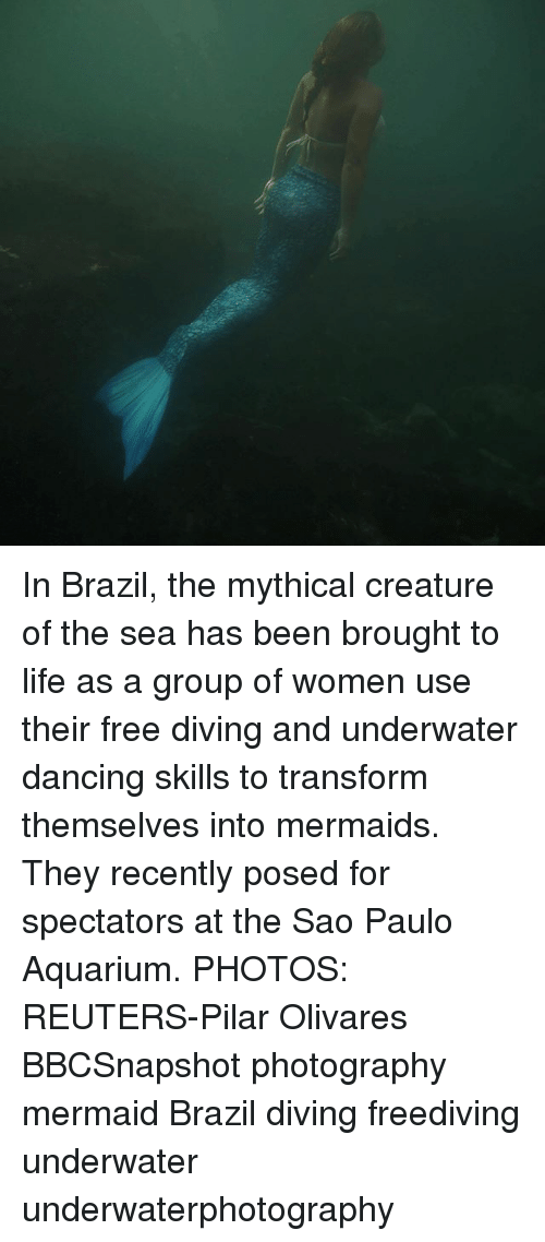 Dancing, Life, and Memes: In Brazil, the mythical creature of the sea has been brought to life as a group of women use their free diving and underwater dancing skills to transform themselves into mermaids. They recently posed for spectators at the Sao Paulo Aquarium. PHOTOS: REUTERS-Pilar Olivares BBCSnapshot photography mermaid Brazil diving freediving underwater underwaterphotography