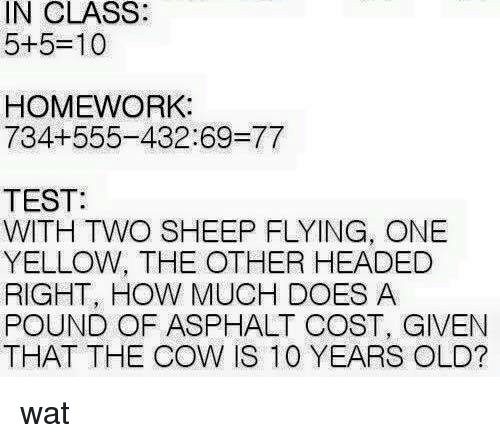 asphalt: IN CLASS:  5+5-10  HOMEWORK:  734+555-432 69-77  TEST:  WITH TWO SHEEP FLYING, ONE  YELLOW, THE OTHER HEADED  RIGHT, HOW MUCH DOES A  POUND OF ASPHALT COST, GIVEN  THAT THE COW IS 100 YEARS OLD? wat