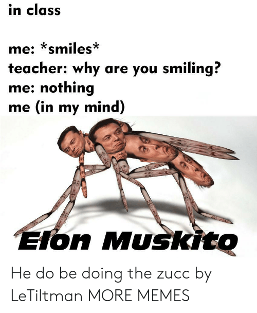 Zucc: in class  me: smiles  teacher: why are you smiling?  me: nothing  me (in my mind)  on Muskito He do be doing the zucc by LeTiltman MORE MEMES