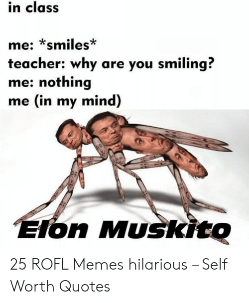 Self Worth: in class  me: *smiles*  teacher: why are you smiling?  me: nothing  me (in my mind)  Elon Muskito 25 ROFL Memes hilarious – Self Worth Quotes