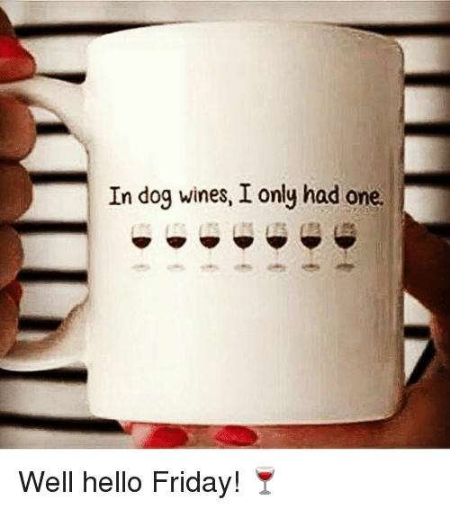 Hello Friday: In dog wines, I only had one. Well hello Friday! 🍷