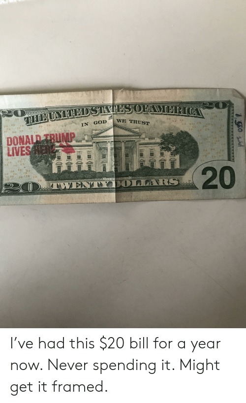Donal Trump: IN GOD  WE TRUST  2 0  20202  DONAL TRUMP  LIVES  20 2 0  2020  20  20 20-20  220  2 0 I've had this $20 bill for a year now. Never spending it. Might get it framed.
