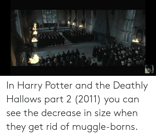 borns: In Harry Potter and the Deathly Hallows part 2 (2011) you can see the decrease in size when they get rid of muggle-borns.