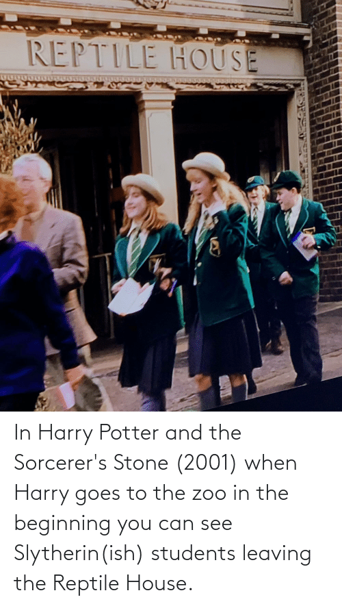 Slytherin: In Harry Potter and the Sorcerer's Stone (2001) when Harry goes to the zoo in the beginning you can see Slytherin(ish) students leaving the Reptile House.