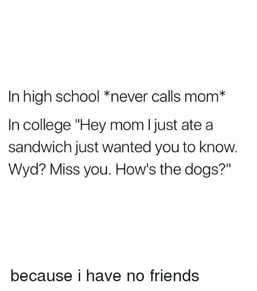 "College, Dogs, and Friends: In high school *never calls mom*  In college ""Hey mom l just ate a  sandwich just wanted you to know.  Wyd? Miss you. How's the dogs?"" because i have no friends"